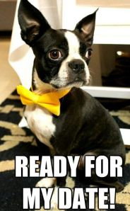 """Ready for my date!"" Image retrieved from: http://media-cache-ak0.pinimg.com/originals/9d/dd/64/9ddd64a31c9accdd76d28f28bb3675a7.jpg"